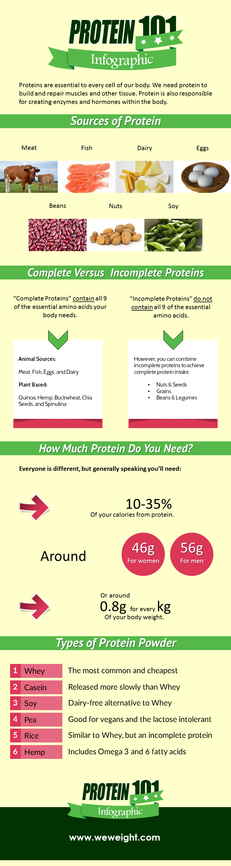basic protein infographic